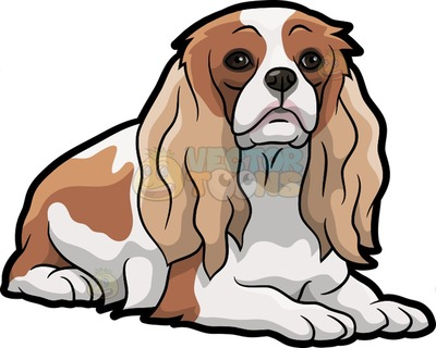 cavalier king Charles spaniel Cartoon Clipart.