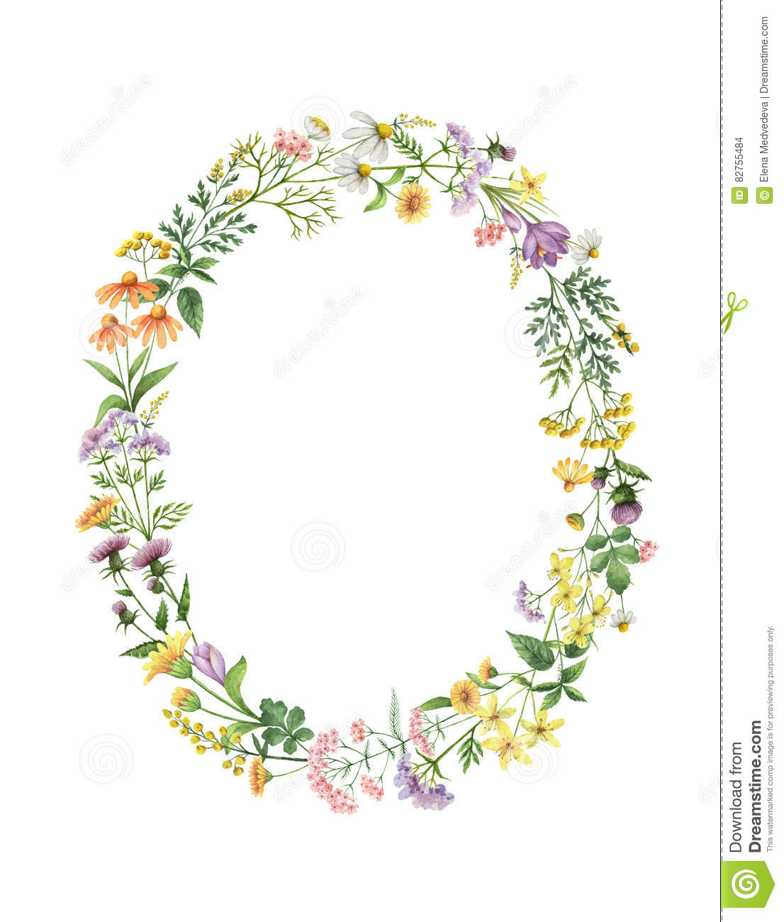 Watercolor Oval Wreath With Meadow Plants. Stock Illustration.
