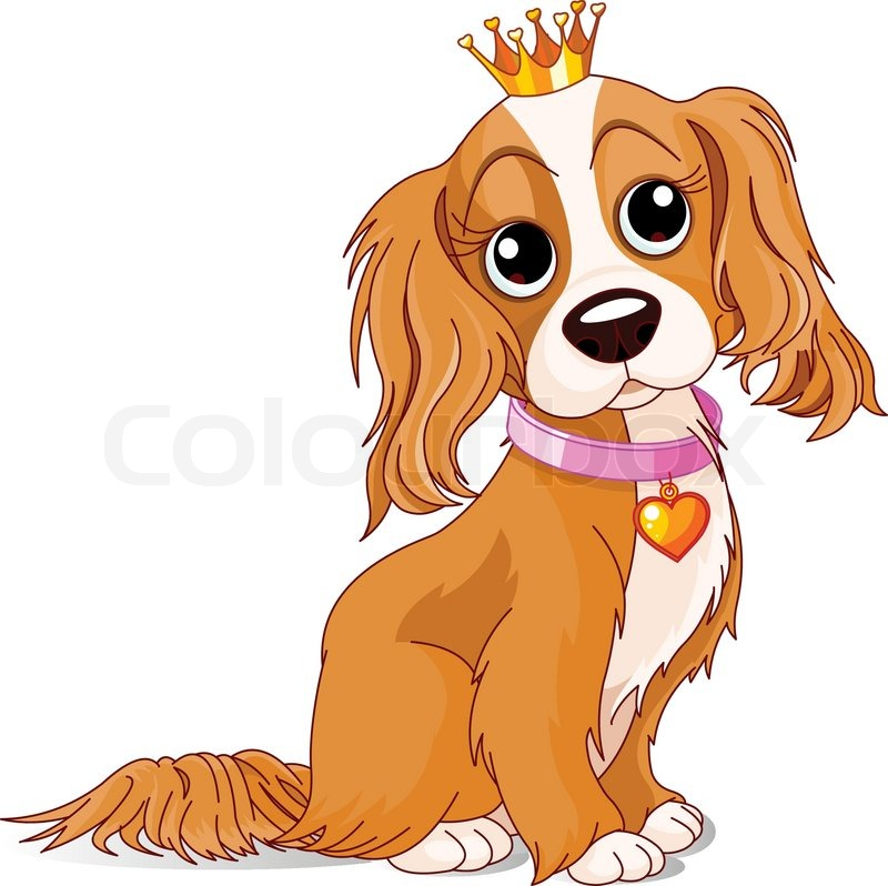 Cavalier King Charles Spaniel with crown.
