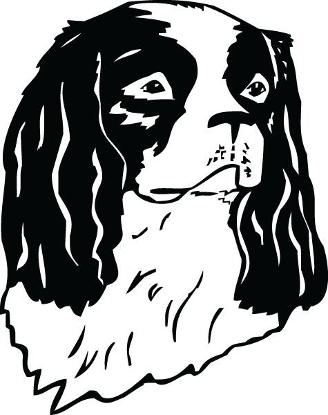 Cavalier King Charles Spaniel Dog Clip Art For Custom Gifts.