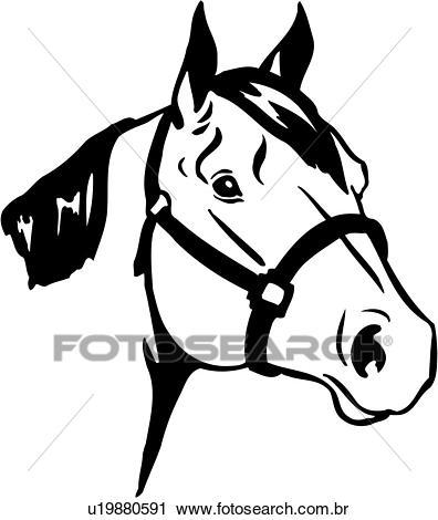Animal, raças, cavalo, cavalo um quarto, cabeça, Clipart.