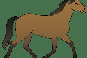 Cavalo clipart » Clipart Portal.