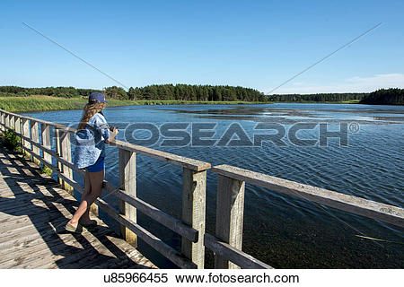 Stock Image of Girl standing on wooden bridge at Cavendish.