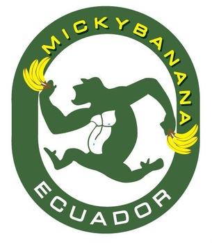 Banana Cavendish Number 1 From Ecuador.