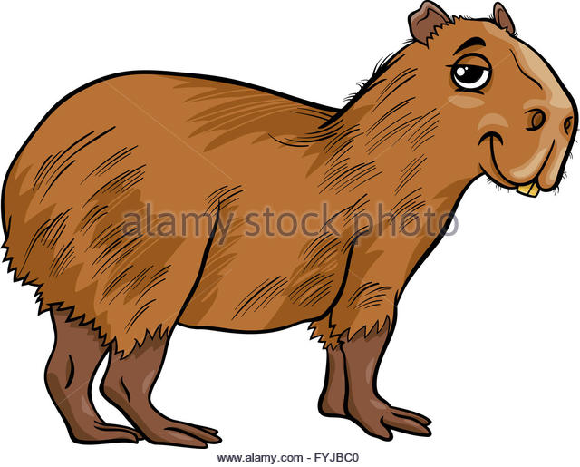 Illustration Capybara Stock Photos & Illustration Capybara Stock.