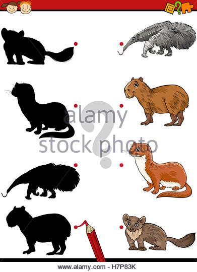 Capybara Picture Stock Photos & Capybara Picture Stock Images.