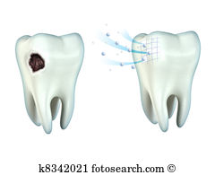 Oral cavity Clip Art and Stock Illustrations. 377 oral cavity EPS.