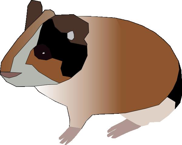 Cartoon Guinea Pig Pictures.