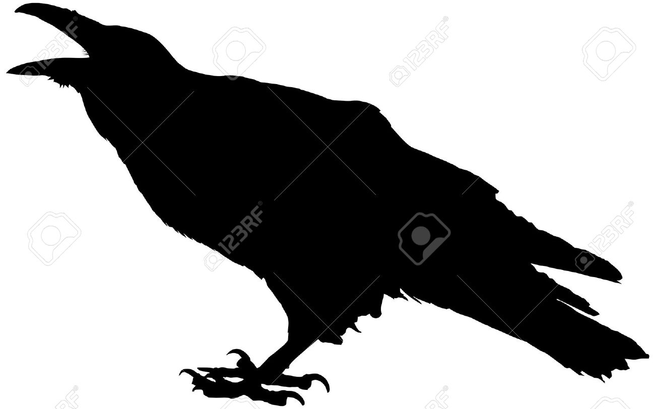 Cawing Raven Vector Silhouette Royalty Free Cliparts, Vectors, And.