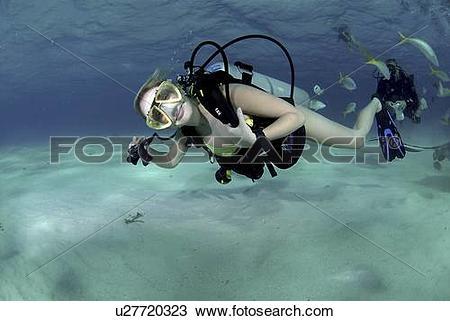 Stock Photo of Bikini Diver at Stingray City Sandbar, Grand Cayman.