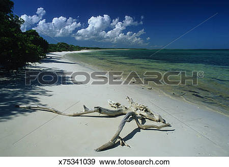 Stock Photograph of Cuba, Cayo Sabina, white beach x75341039.