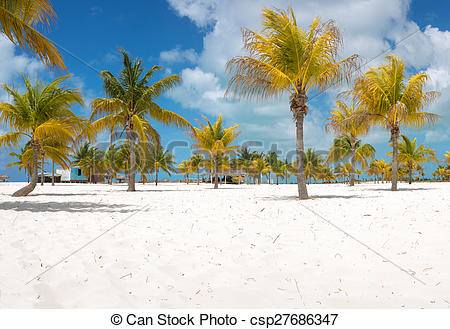 Stock Photo of Palm trees on the white sand. Playa Sirena. Cayo.