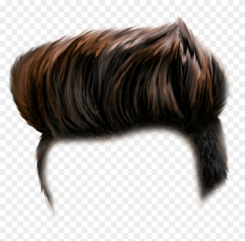 Free Png Download Hair For Picsart Png Images Background.