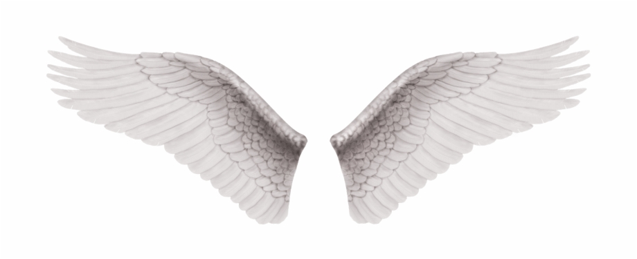 Cb Edit Wings Png.