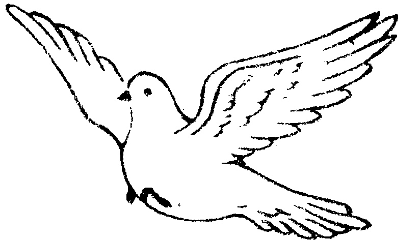 Bird clipart sketch, Bird sketch Transparent FREE for.