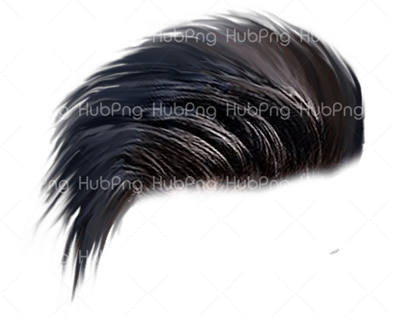 hair png hd download Transparent Background Image for Free.