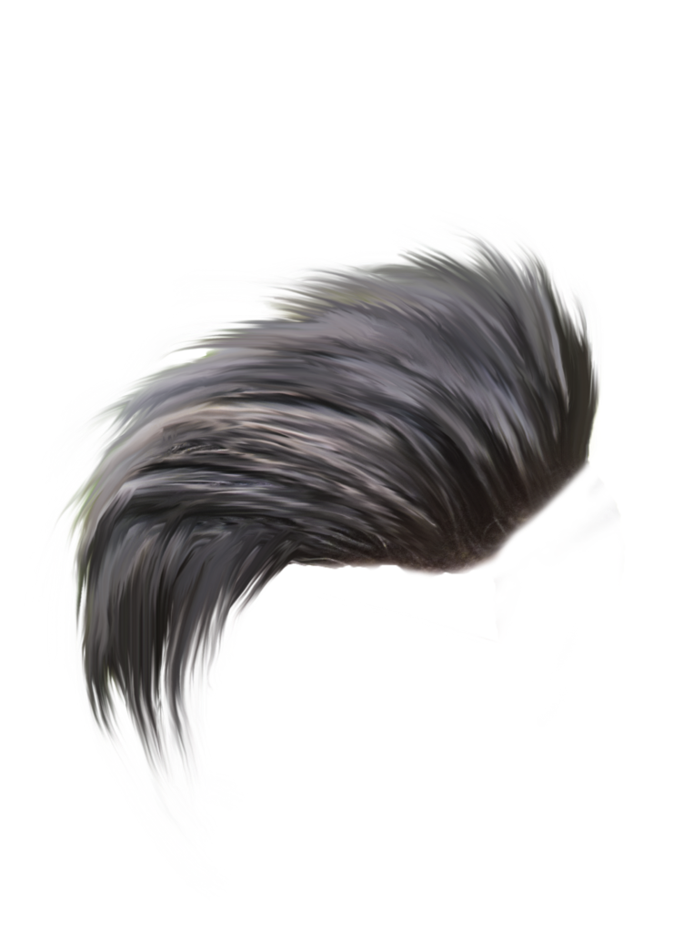 Hair Png ,HD PNG . (+) Pictures.