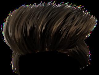 Hair Png Download.