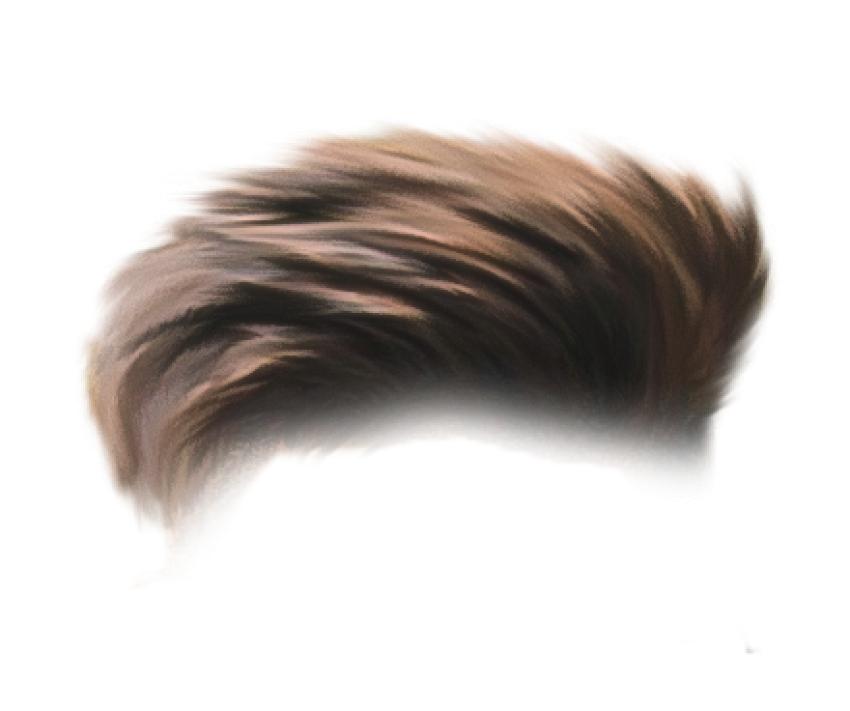 PicsArt CB Hair PNG.