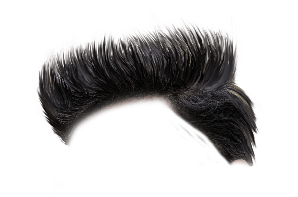 Download Free png CB Hair Png HD Download.