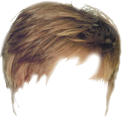 cb hair png Archives.