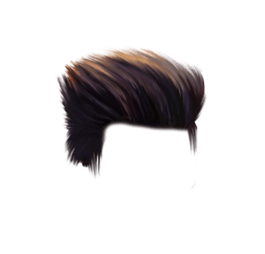 Hair Png & Free Hair.png Transparent Images #49.