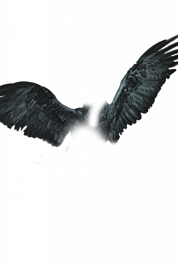 New] Devil and Dragon Wings Png download, Wings png zip file download.