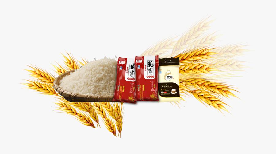 Rice Gadu Common Barley.