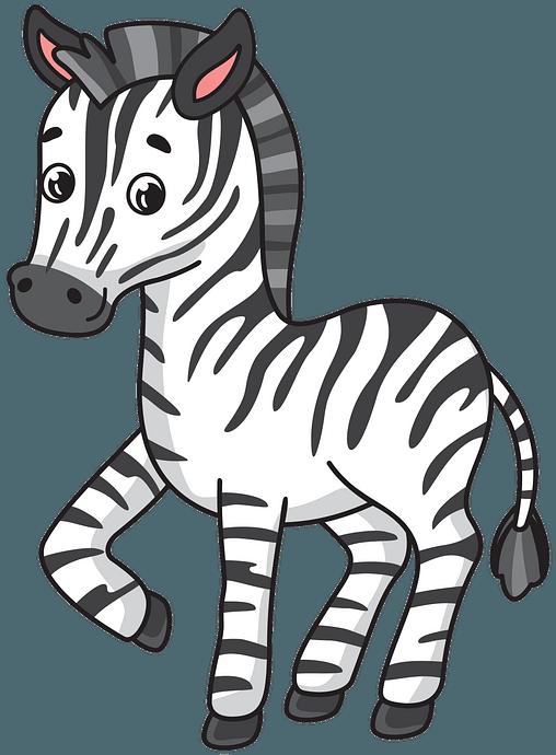 Zebra clipart. Free download..