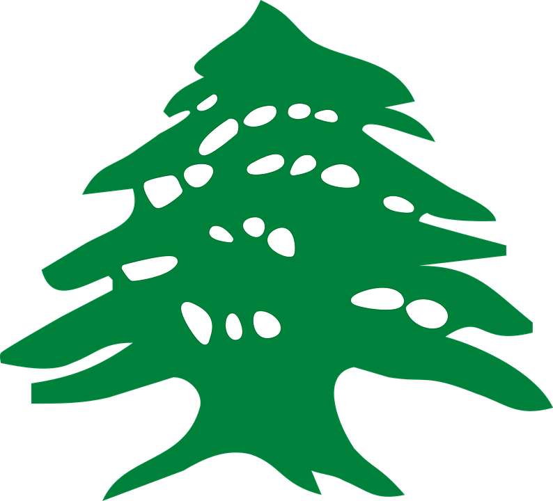 Free vector graphic: Green, Tree, Flag, Cedar.