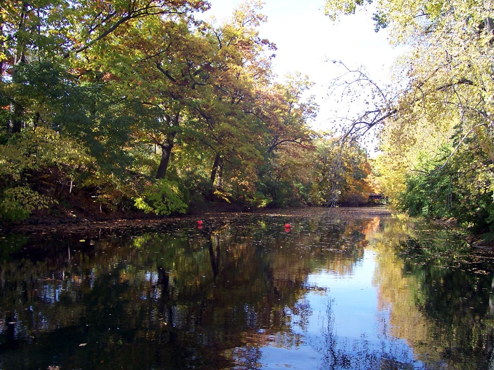1000+ images about On the Banks of the Red Cedar River: Life at.