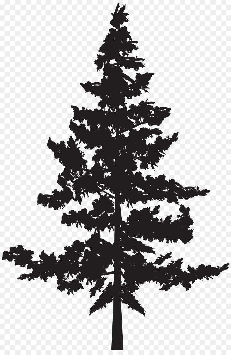 Cedar Tree Silhouette.