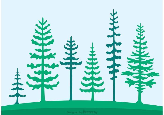 Cedar Trees Silhouette Vector.