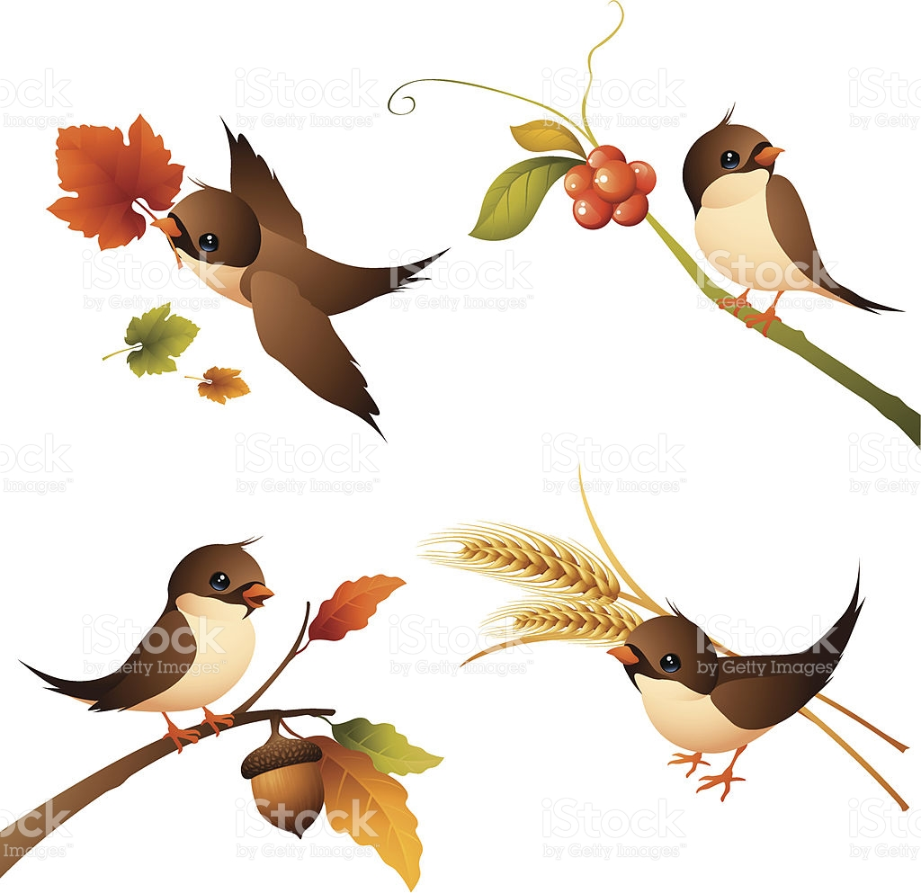 Sparrow Autumn Set stock vector art 165753327.