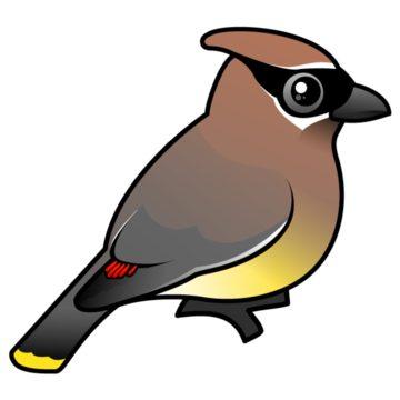 Birdorable Cedar Waxwing Postcard.
