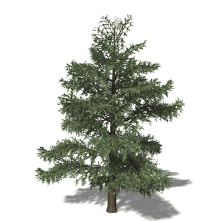 Free High Resolution graphics and clip art: high quality tree.
