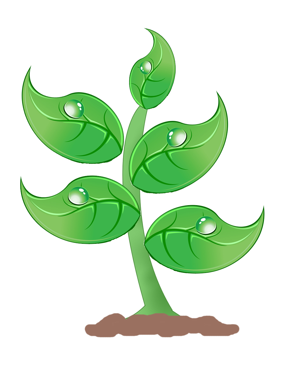 Seedlings Clipart.