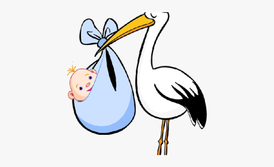 Stork Clipart Baby Animation.