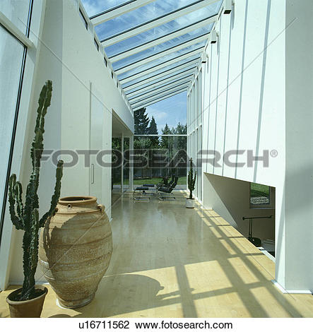 Stock Photo of Cactus and tall terracotta pot in modern white hall.