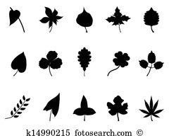 Celandine Clip Art Illustrations. 29 celandine clipart EPS vector.