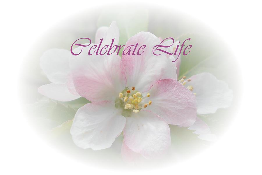 Celebrate Life Clipart.