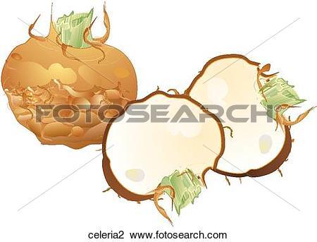 Clip Art of Celeriac celeria2.