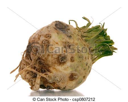 Stock Photo of celeriac.