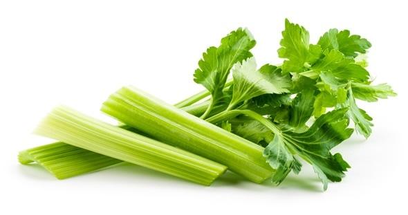 Celery Allergy.