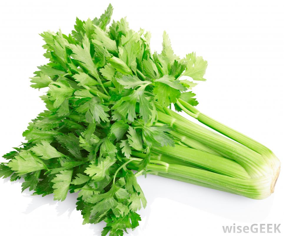 What is Celery? (with pictures).