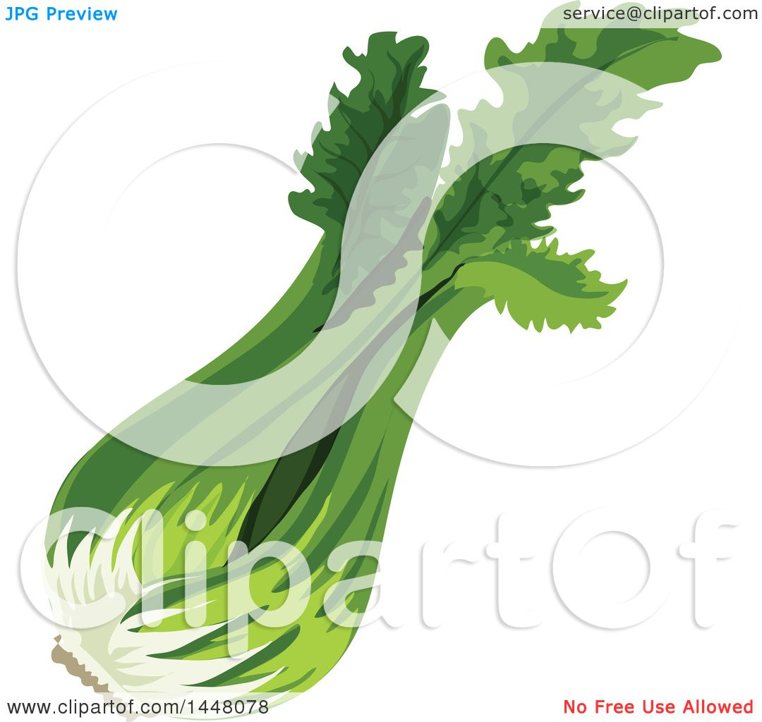 Clipart of Celery Stalks.
