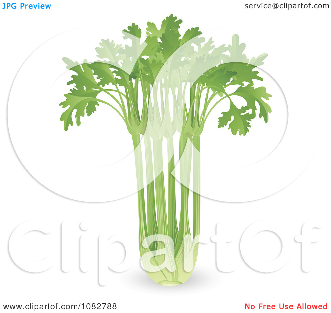 Clipart 3d Bunch Of Celery.