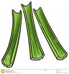 Celery Clipart.