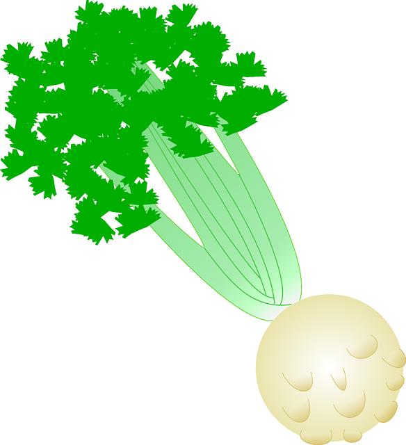 Free photo Tuber Vegetables Celeriac Turnip Celery.