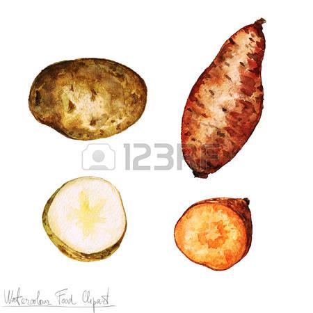 18,249 Potato Cliparts, Stock Vector And Royalty Free Potato.